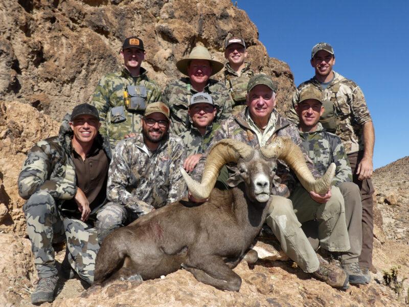 Larry's Giant Desert Bighorn