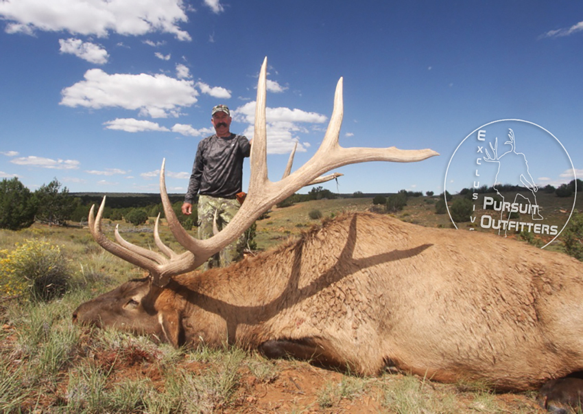 Joel Z. with the big bull we called Brahma.