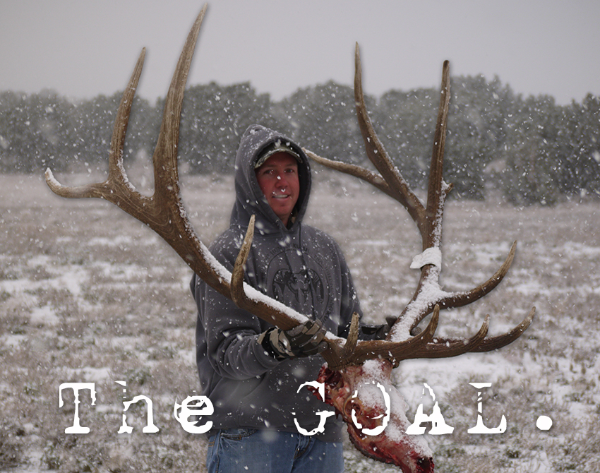 Arizona Trophy Guided Elk Hunting Goal
