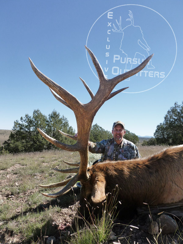 Arizona Elk Mass