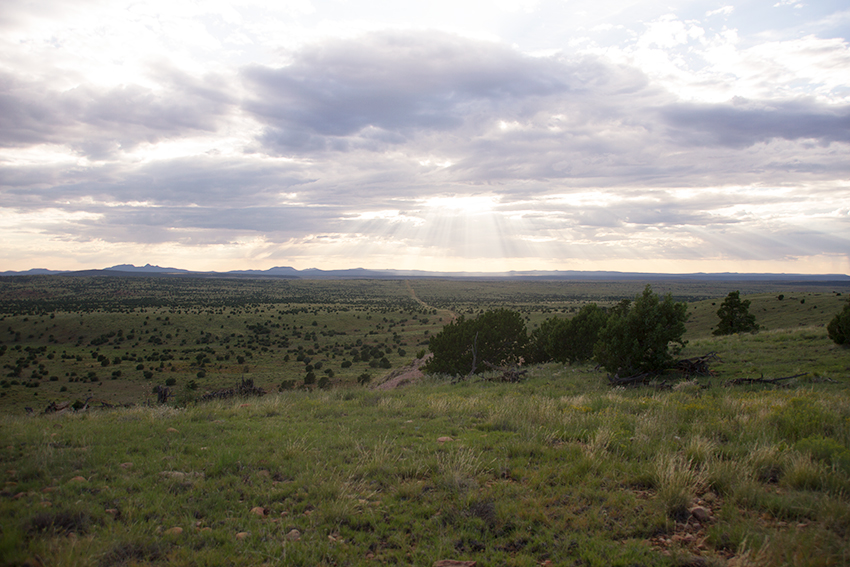 A beautiful view of the pronghorn antelope country of Arizona.
