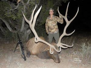 Giant Arizona Elk