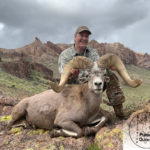 Joe's Arizona Raffle Desert Bighorn Sheep