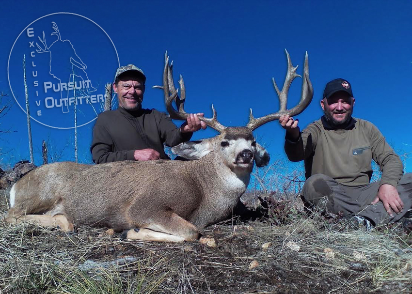 Steve Z. took an awesome 12AE mule deer with us.